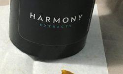 Harmony Shatter Colorado