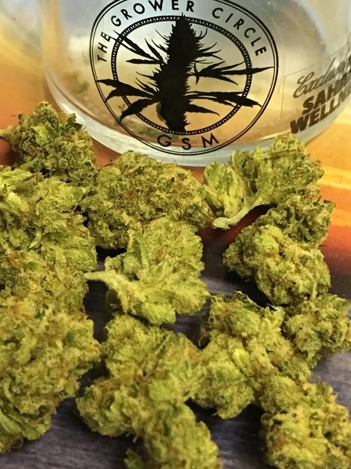 Grower Circle weed Las Vegas