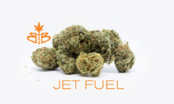 bagged buds dc jet fuel weed photo