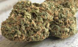 dc green kings jacks velvet soda weed photo
