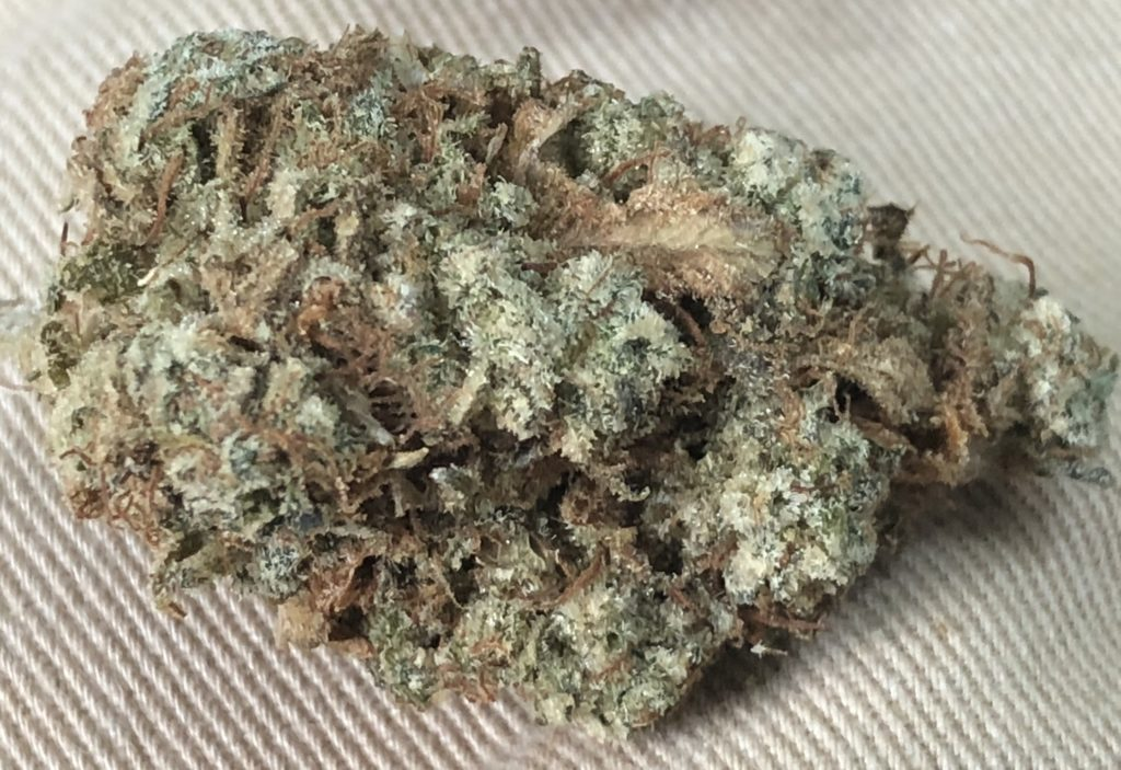 Canamelo DC Inferno OG flowers weed photography