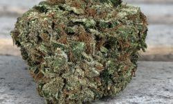 Green Label DC Lemon Haze Flower image Photograph weed