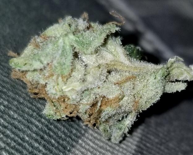 Puff Puff DC Banana Split HQ HD image flowers weed marijuana
