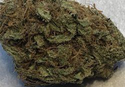 DC TeaPad Lemon Alien Dawg marijuana flowers