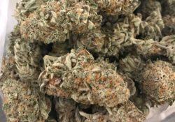 Diamond City Delivery DC Sour Cream marijuana flowers