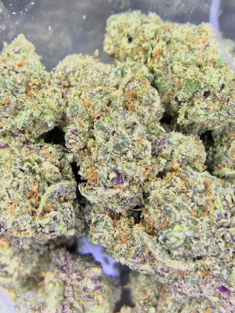 Blue Cookies close-up