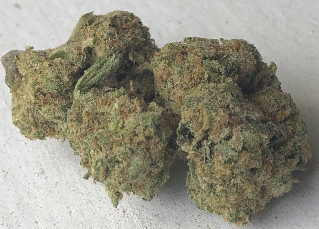 Sunset Sherbet DC weed 3/19