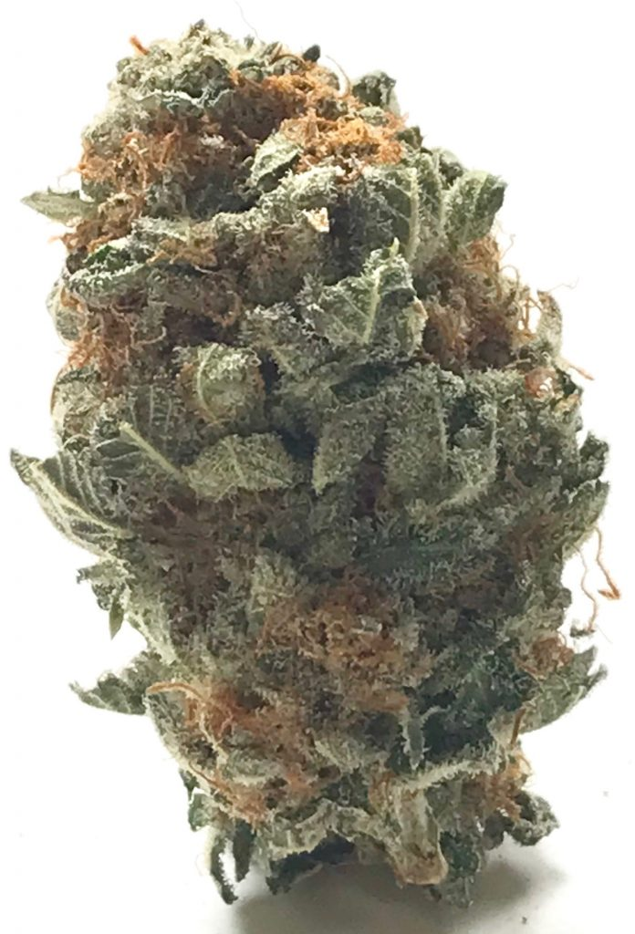 Blue Cheese DC weed