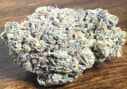 Purple Candy HashApp weed