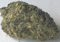 Wifey Treats DC weed LSK