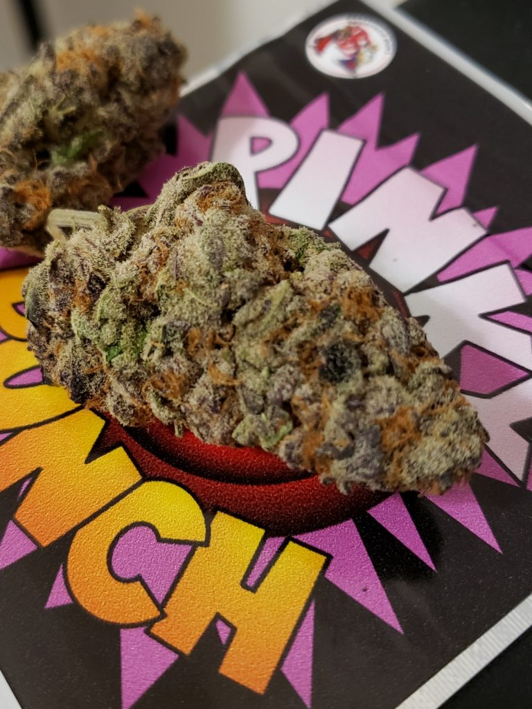 Purple Dream dc bagged buds weed photography