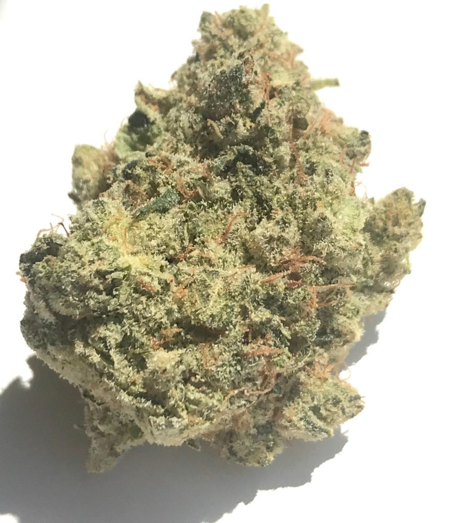 Black Rhino DC diamond city delivery weed photography