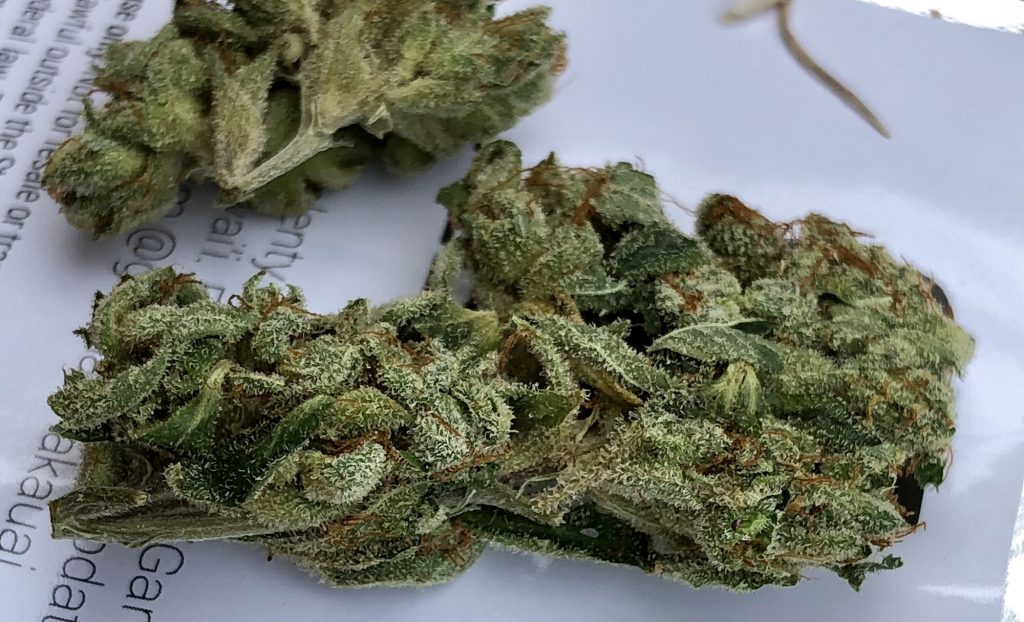 WiFi OG medical marijuana Green Aloha Hawaii weed photography