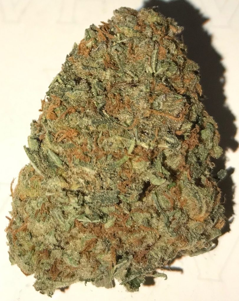 Pink Kush dc diamond city delivery weed photography
