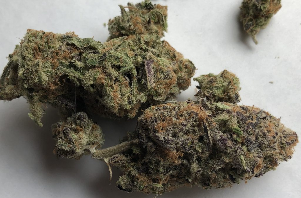 Sherbet Punch dc district chiefers weed photography
