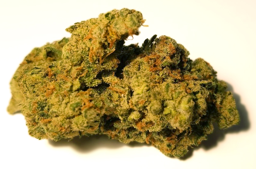 Candy Jack dc street lawyer services weed photography