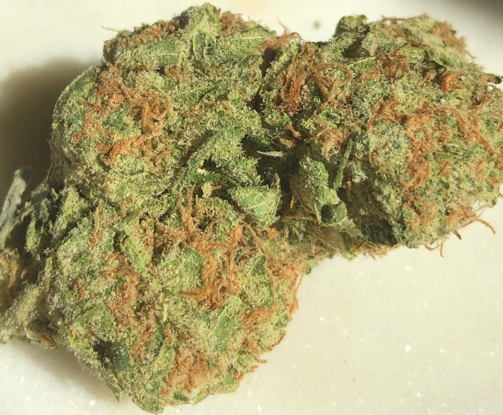 mint cookies dc capitol buds delivery weed photography