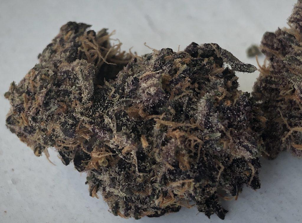 purple mayhem good chemistry massachusetts weed photography