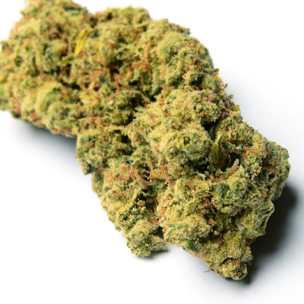 jack the ripper dc street lawyer weed photography