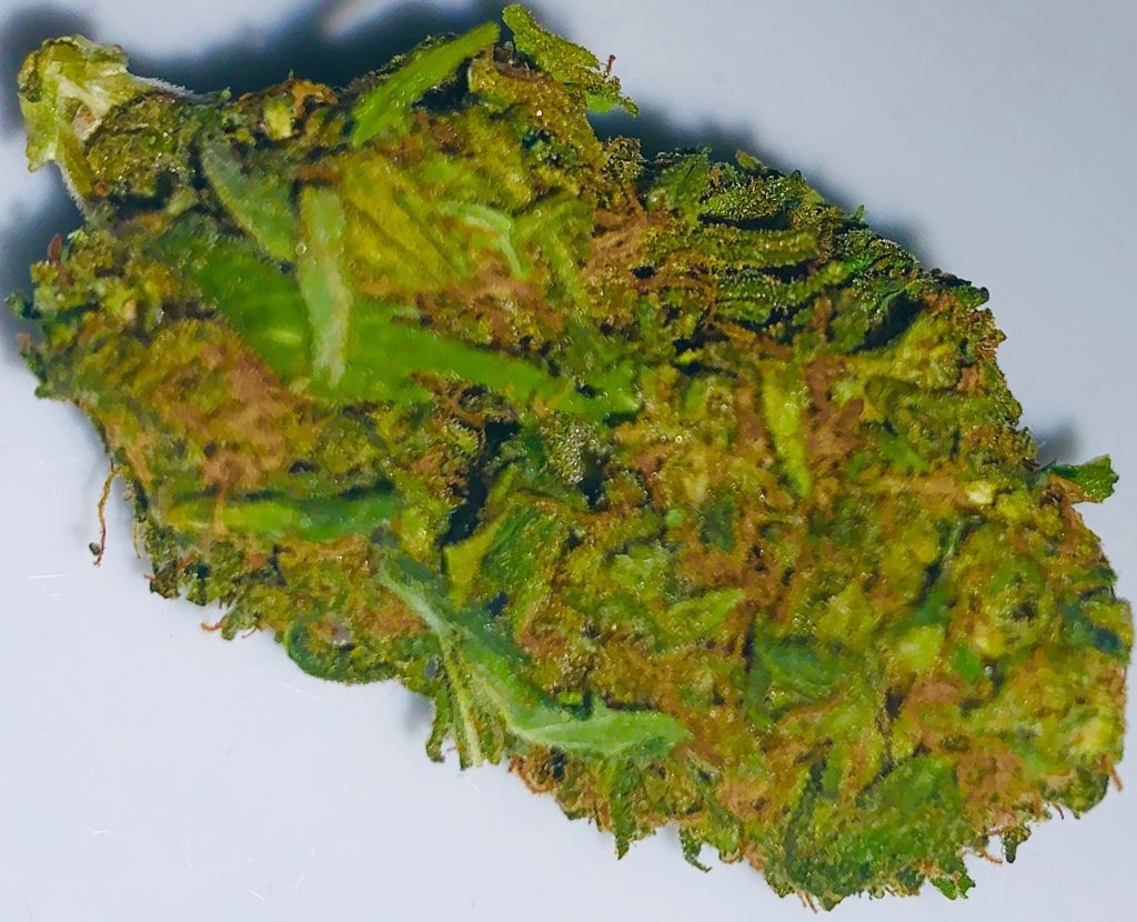 blue cookies dc hashapp weed photography