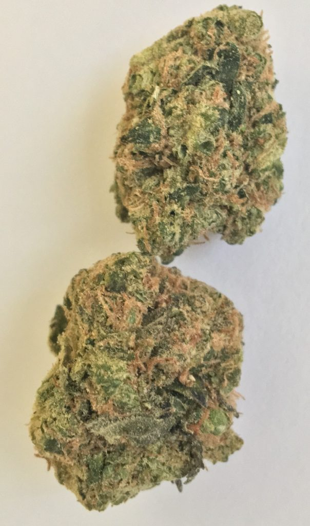 sour diesel baked dc weed photography