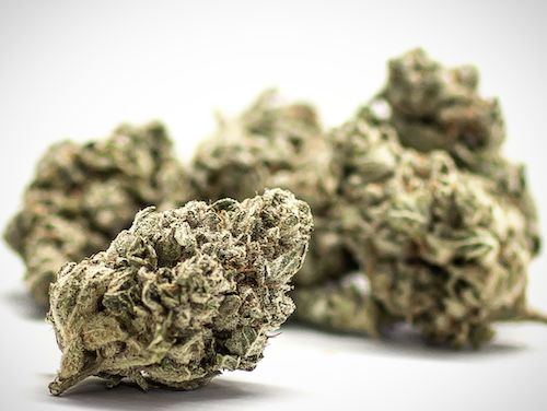 green kings dc gg1 marijuana flowers