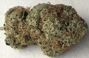 exotic organics dc jet fuel weed photo