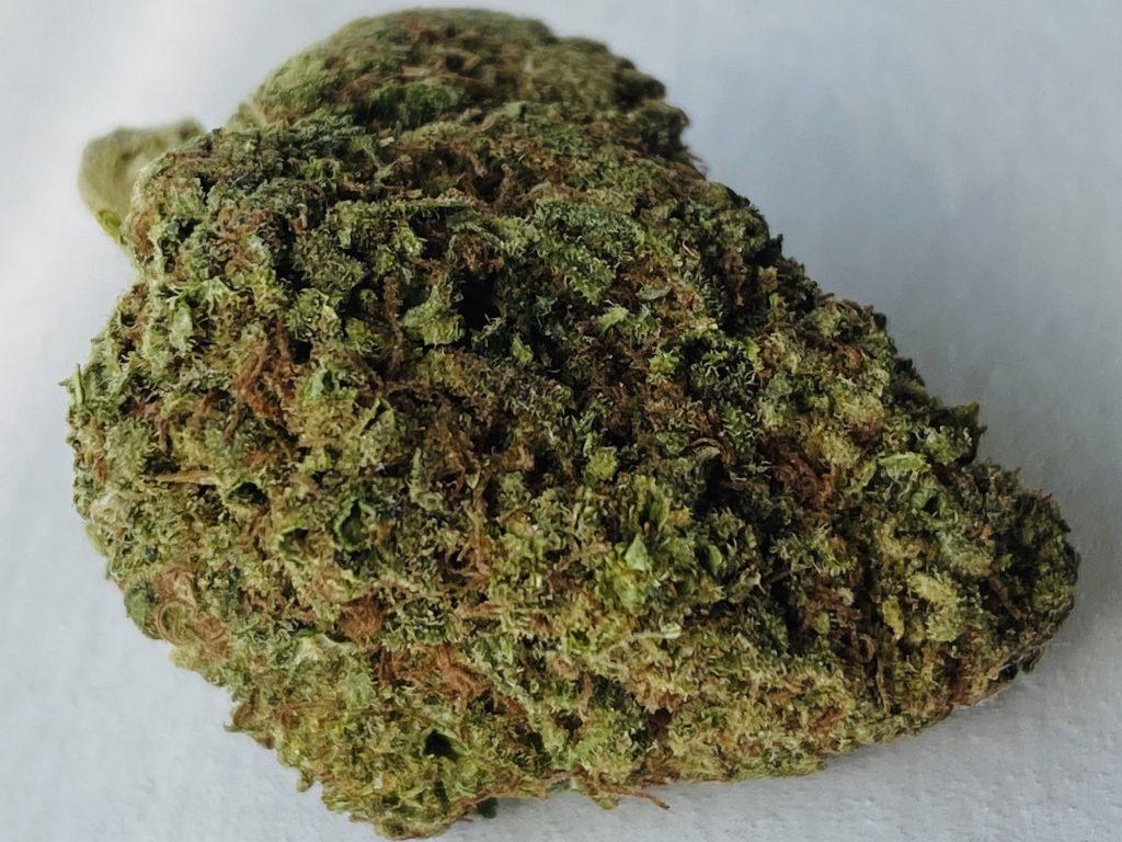 select co op dc papaya marijuana flowers