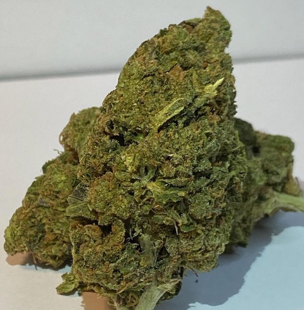 select co op dc gelati weed photo