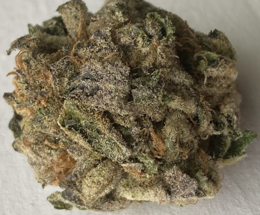 baked dc animal cookies marijuana flowers