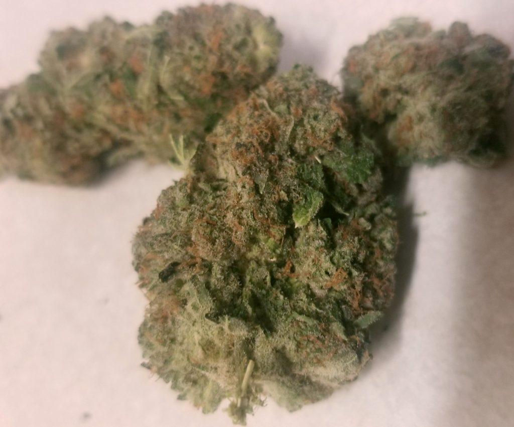 lucky chuckie dc mango kush weed photo