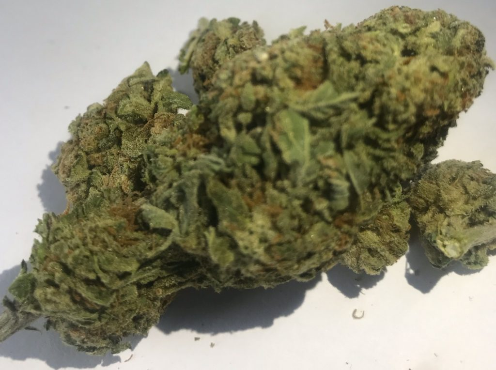 select co op dc purple dream weed photo