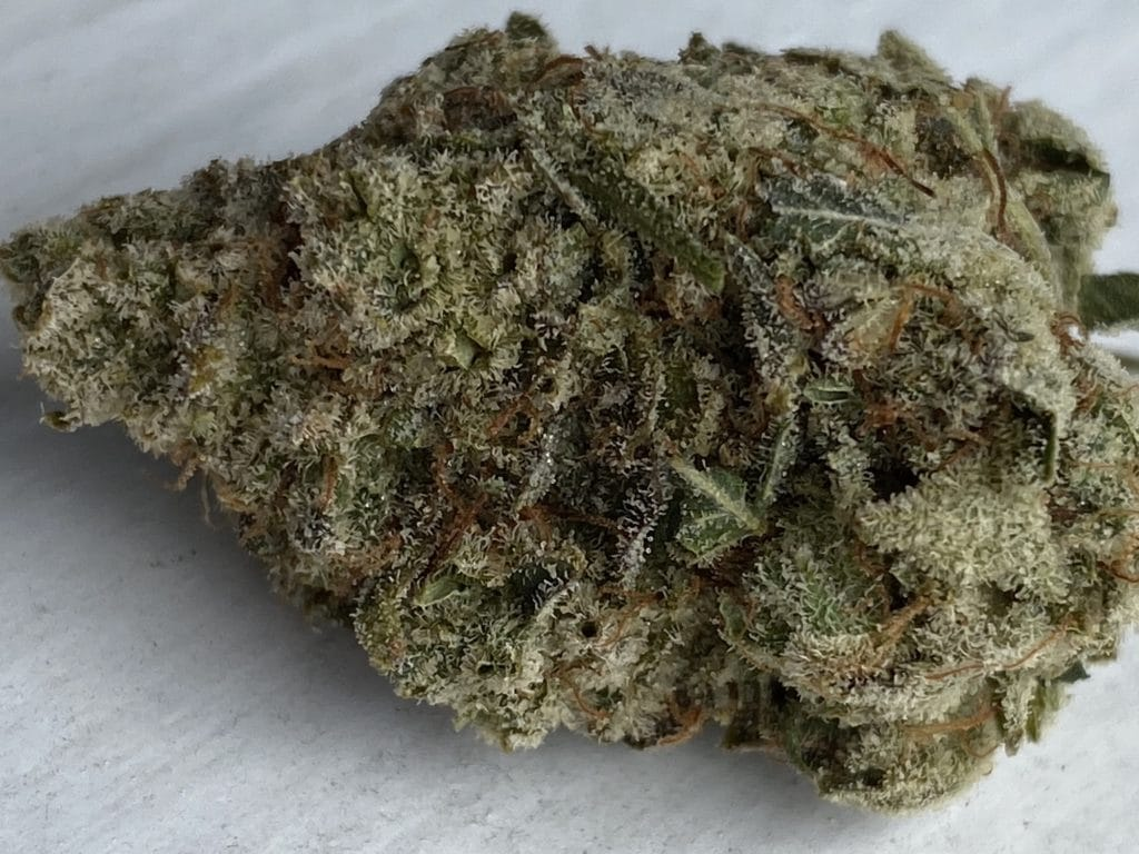 baked dc elmers glue weed photo