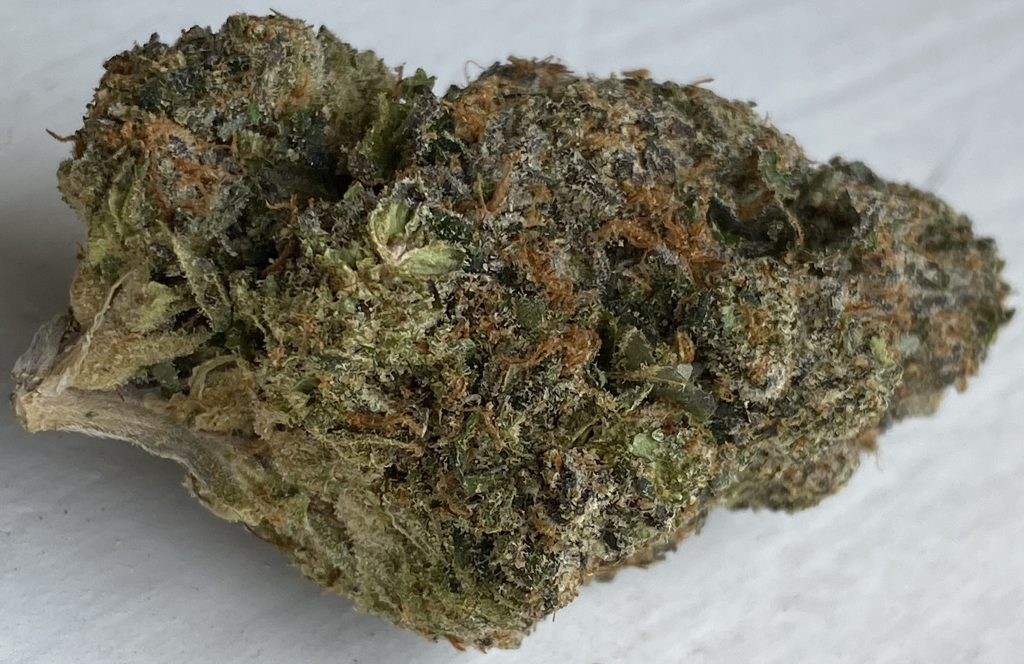 baked dc rocket fuel weed photo
