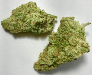 gifted curators dc xj 13 weed photo