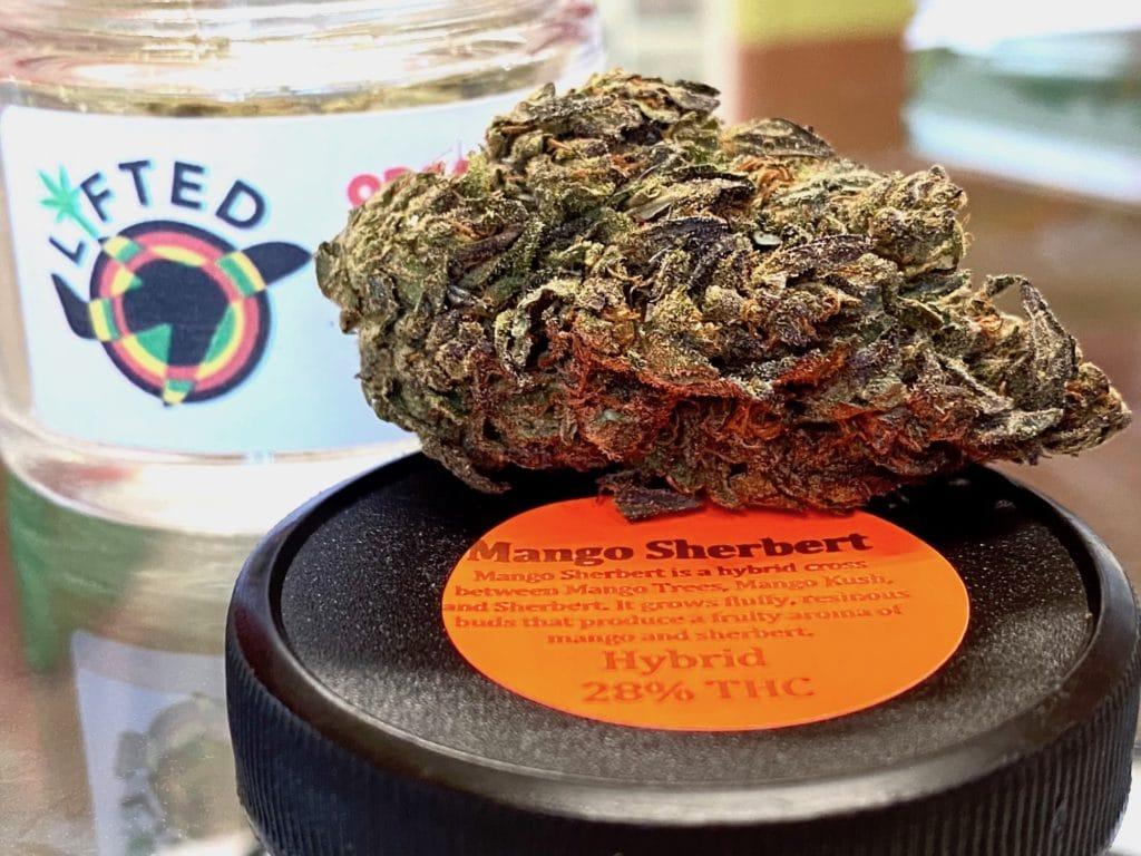 lifted shop dc mango sherbert weed photo