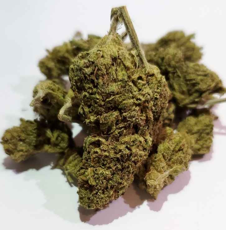 select co op dc nine pound hammer weed photo