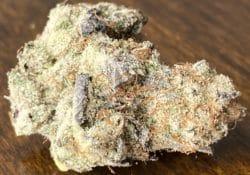 baked dc dj short blueberry weed photo
