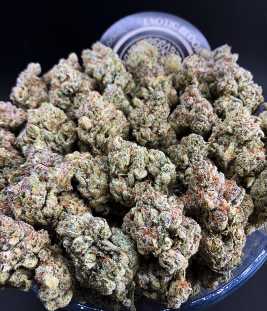 exotic blooms dc denver cookies weed photo