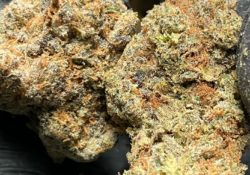 green kings dc larry payton weed photo