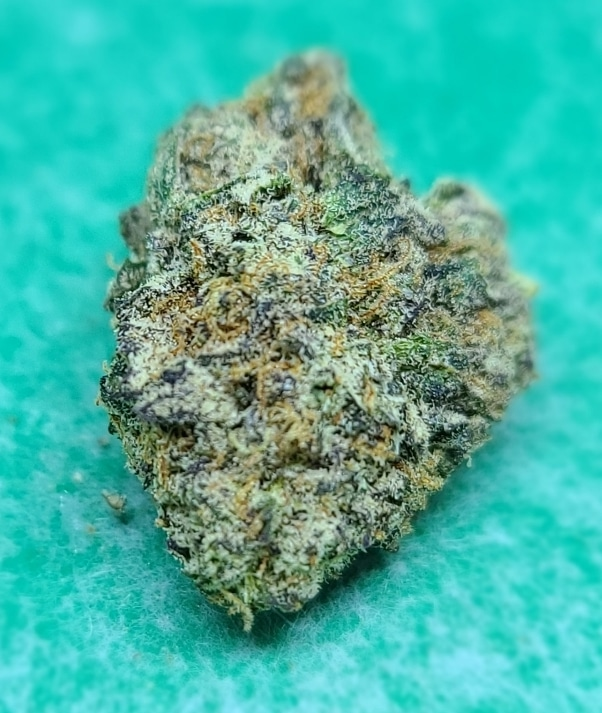 lucky chuckie dc blue dream weed photo