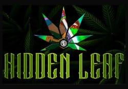 hidden leaf banner
