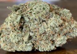 baked dc platinum glookies weed photo