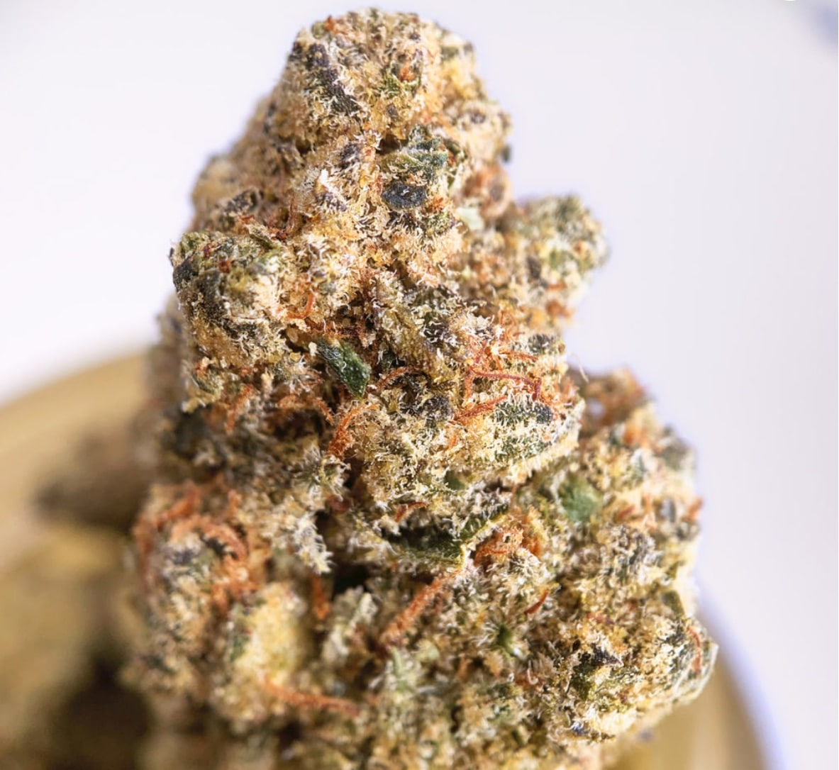 district connect dc lemon cookies weed photo