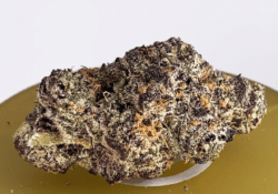 district connect dc purple gsc weed photo