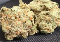 entourage dc space queen weed photo