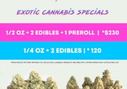 puff kings dc exotic cannabis special flyer
