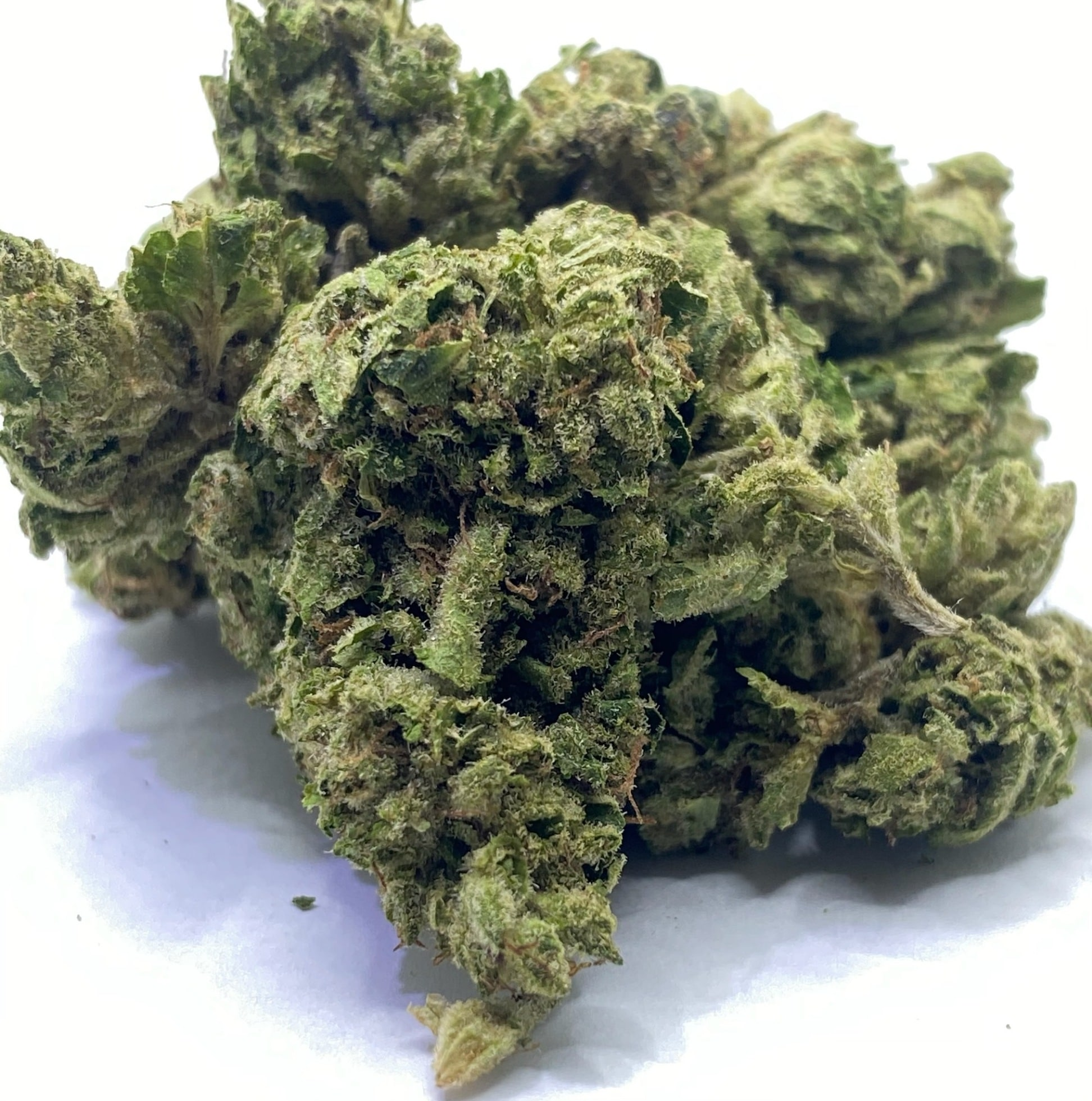 select co op dc afghan sour weed photo