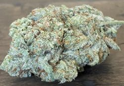 baked dc space cake weed photo