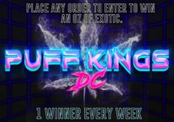 puff kings dc exotic